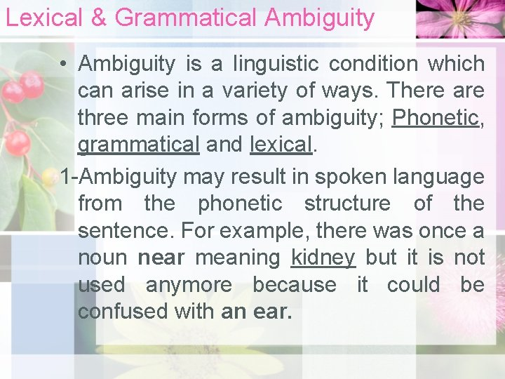 Lexical & Grammatical Ambiguity • Ambiguity is a linguistic condition which can arise in