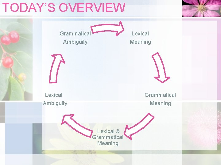 TODAY'S OVERVIEW Grammatical Lexical Ambiguity Meaning Lexical Grammatical Ambiguity Meaning Lexical & Grammatical Meaning