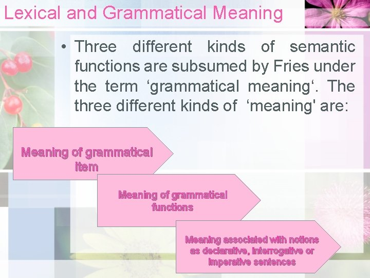 Lexical and Grammatical Meaning • Three different kinds of semantic functions are subsumed by