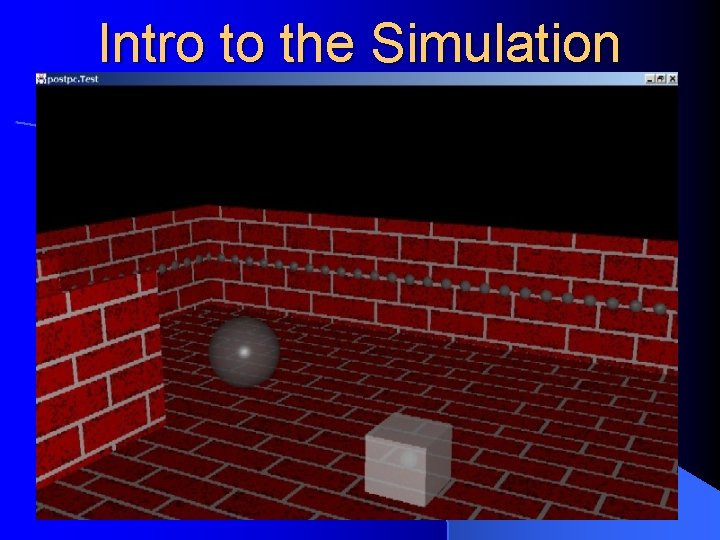 Intro to the Simulation