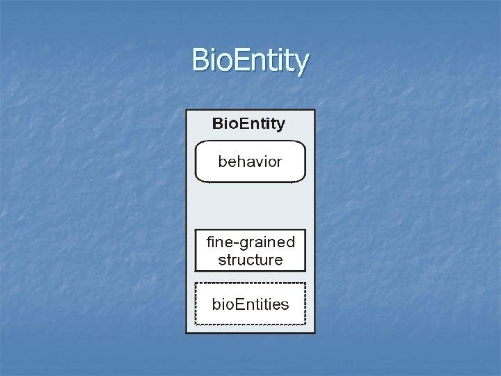 Bio. Entity