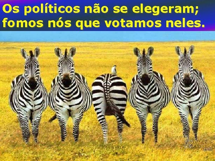 Os políticos não se elegeram; fomos nós que votamos neles.