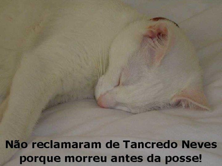 Não reclamaram de Tancredo Neves porque morreu antes da posse!