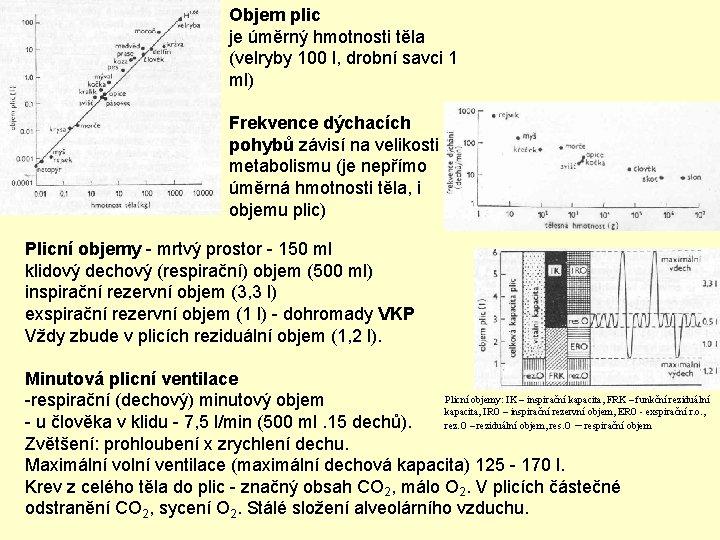 Objem plic je úměrný hmotnosti těla (velryby 100 l, drobní savci 1 ml) Frekvence