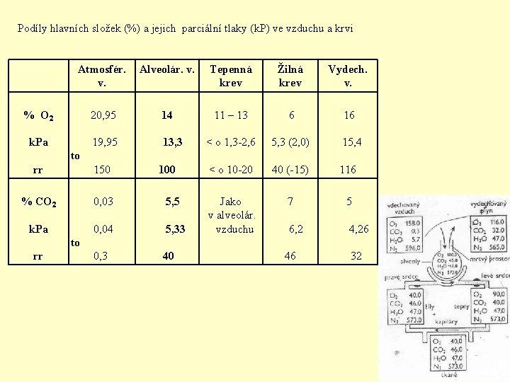 Podíly hlavních složek (%) a jejich parciální tlaky (k. P) ve vzduchu a krvi