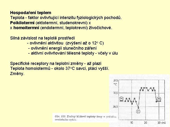 Hospodaření teplem Teplota - faktor ovlivňující intenzitu fyziologických pochodů. Poikilotermí (ektotermní, studenokrevní) x x