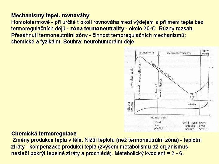 Mechanismy tepel. rovnováhy Homoiotermové - při určité t okolí rovnováha mezi výdejem a příjmem