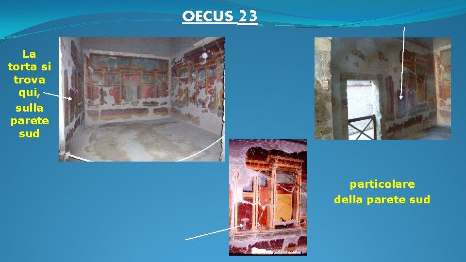 OECUS 23 La torta si trova qui, sulla parete sud particolare della parete sud