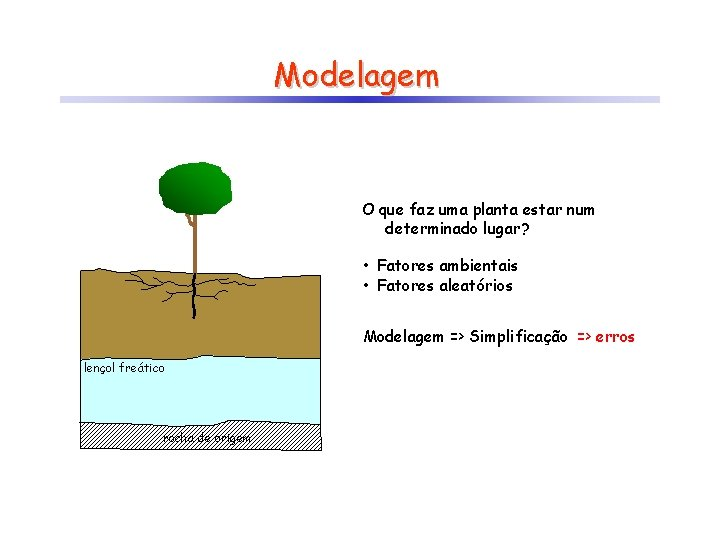 Modelagem O que faz uma planta estar num determinado lugar? • Fatores ambientais •