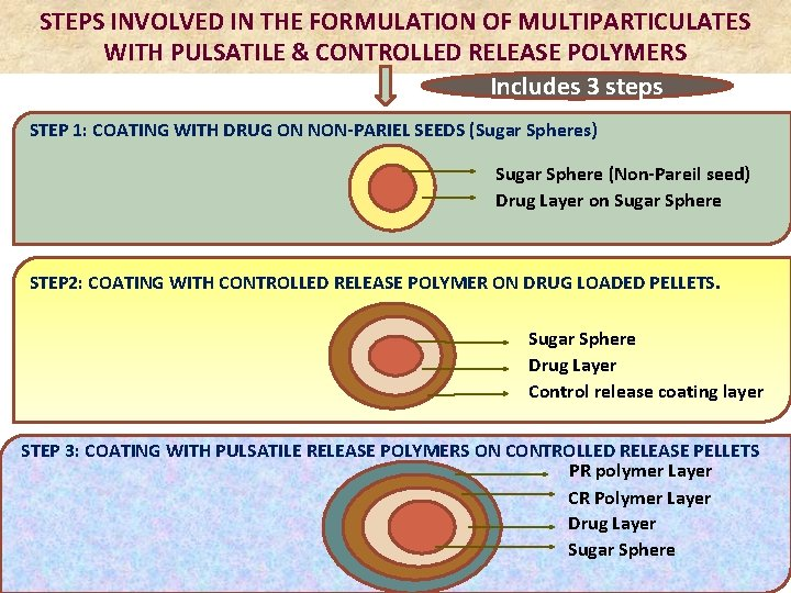 STEPS INVOLVED IN THE FORMULATION OF MULTIPARTICULATES WITH PULSATILE & CONTROLLED RELEASE POLYMERS Includes