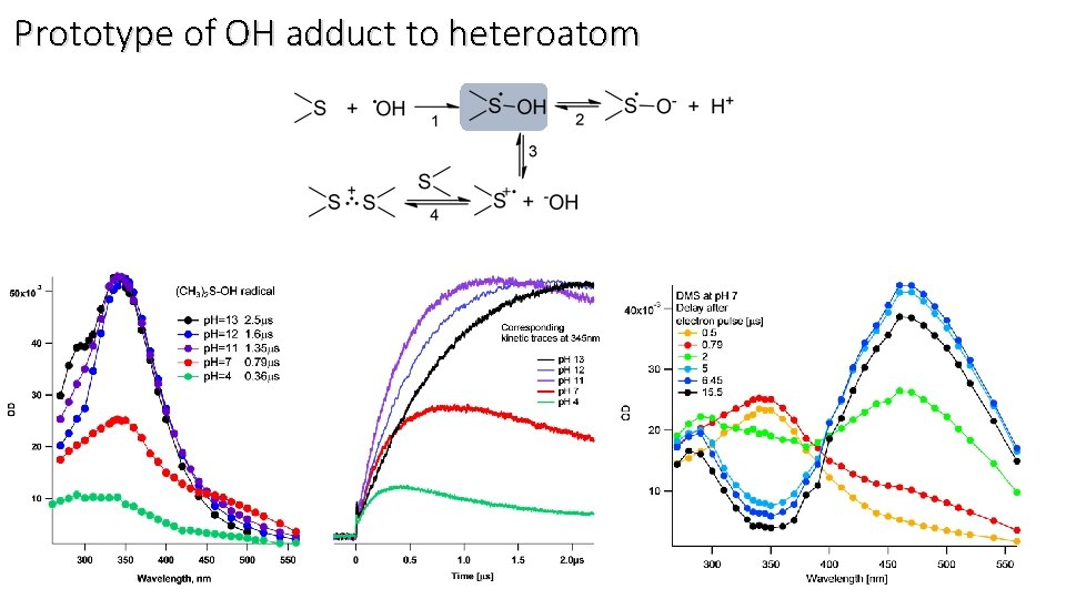 Prototype of OH adduct to heteroatom