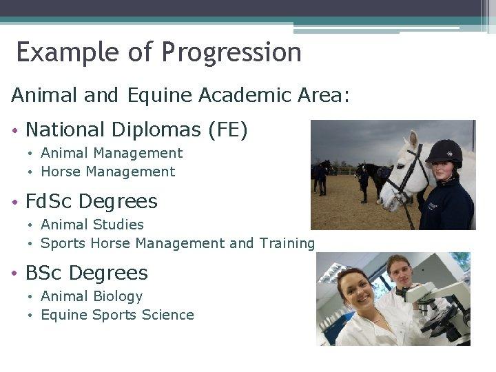Example of Progression Animal and Equine Academic Area: • National Diplomas (FE) • Animal