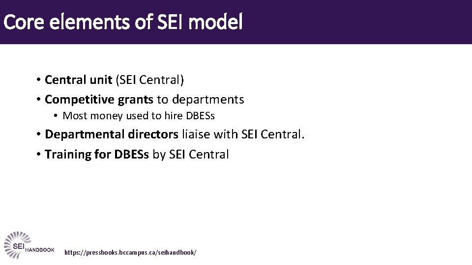 Core elements of SEI model • Central unit (SEI Central) • Competitive grants to