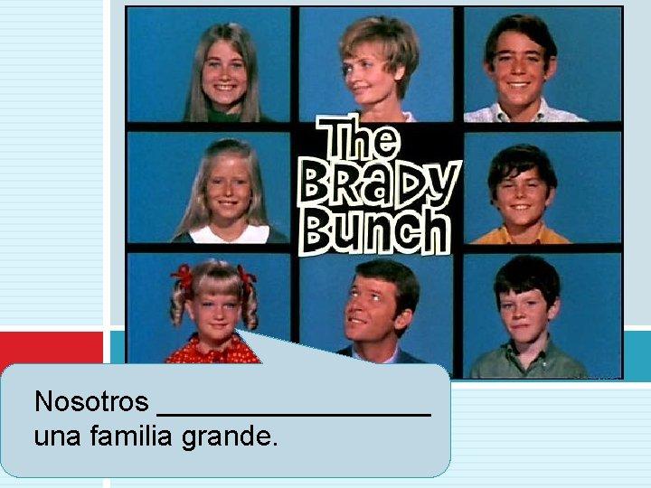 Nosotros _________ una familia grande.
