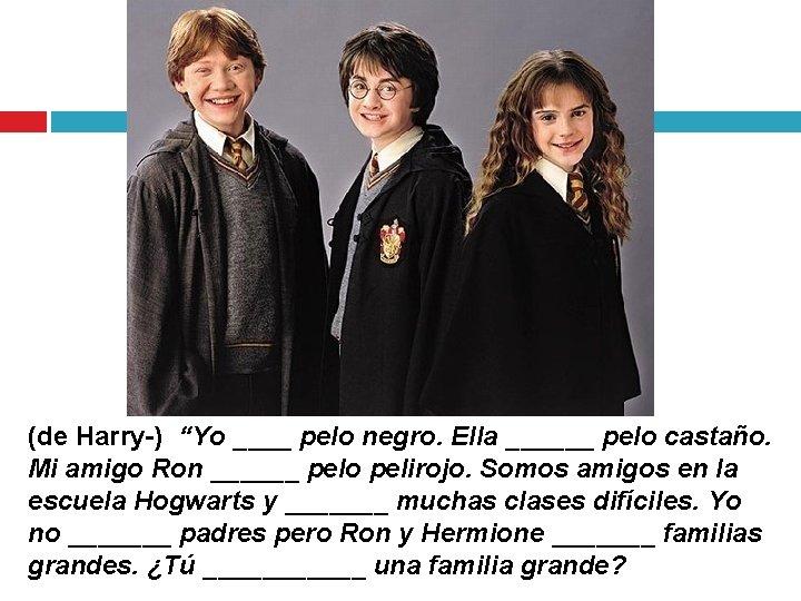"(de Harry-) ""Yo ____ pelo negro. Ella ______ pelo castaño. Mi amigo Ron ______"