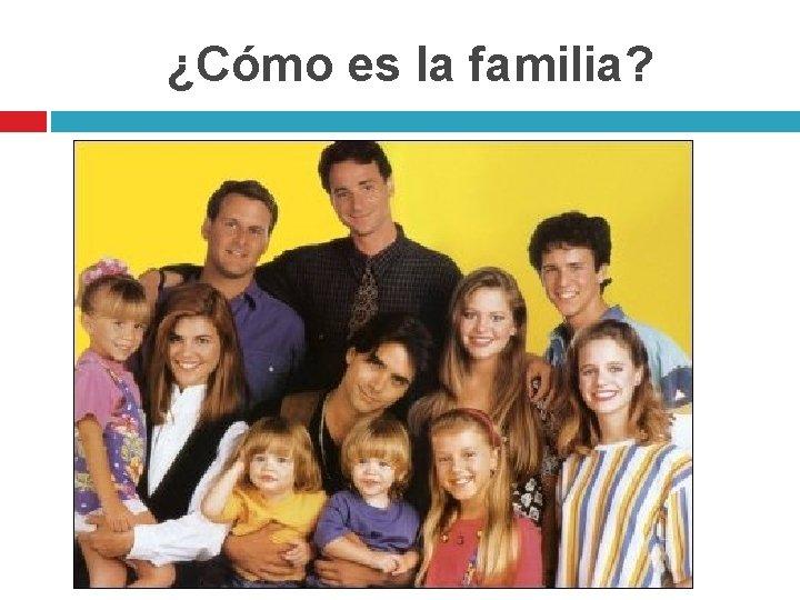 ¿Cómo es la familia?