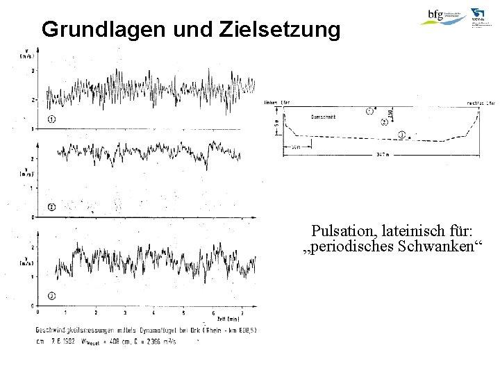 """Grundlagen und Zielsetzung Pulsation, lateinisch für: """"periodisches Schwanken"""" 1)"""