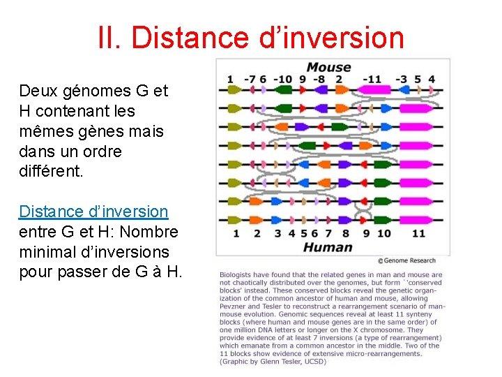 II. Distance d'inversion Deux génomes G et H contenant les mêmes gènes mais dans