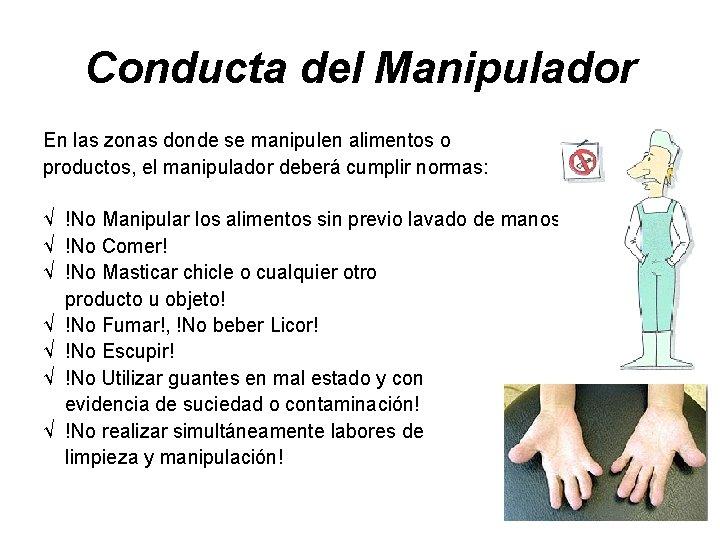 Conducta del Manipulador En las zonas donde se manipulen alimentos o productos, el manipulador