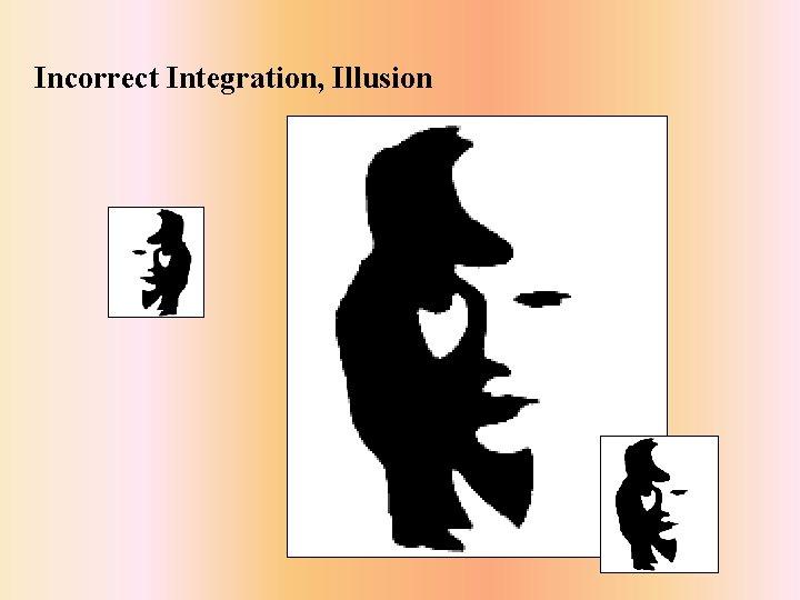 Incorrect Integration, Illusion