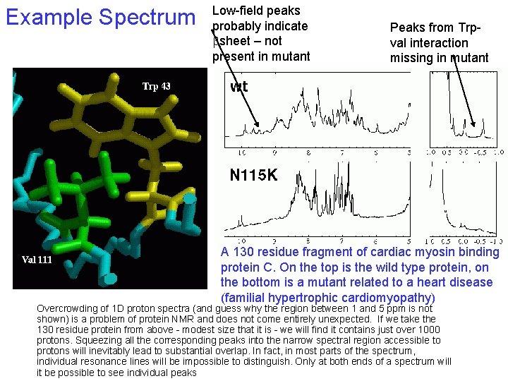 Example Spectrum Low-field peaks probably indicate bsheet – not present in mutant Peaks from