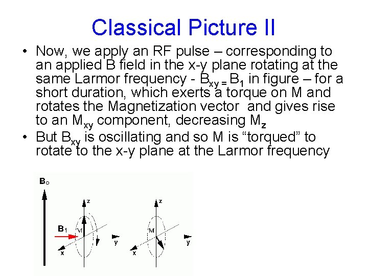 Classical Picture II • Now, we apply an RF pulse – corresponding to an