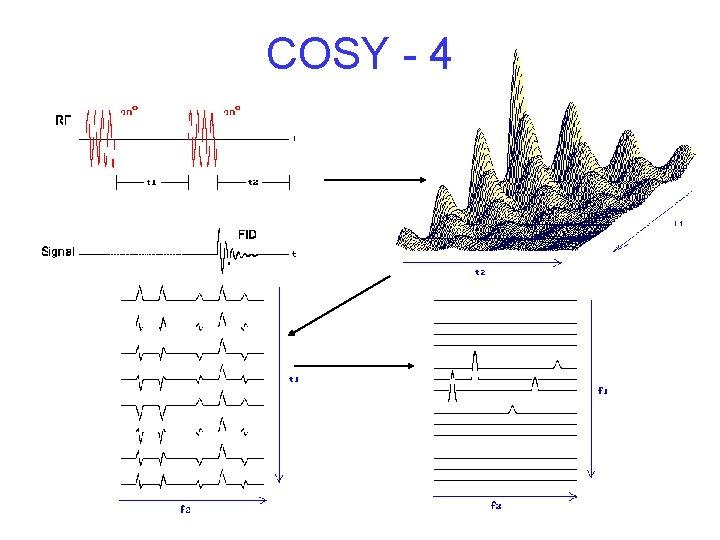 COSY - 4