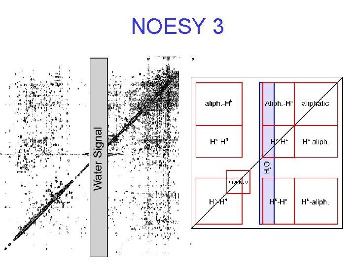 NOESY 3