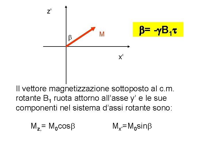 z' b b= -g. B 1 t M x' Il vettore magnetizzazione sottoposto al
