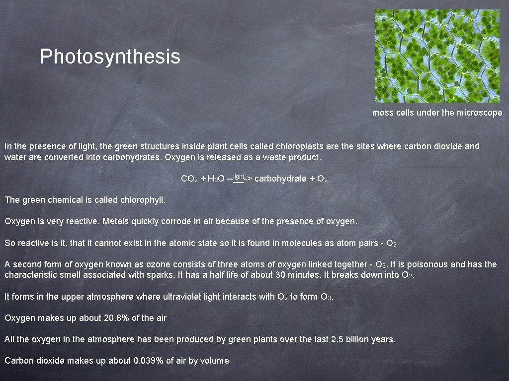 Photosynthesis moss cells under the microscope In the presence of light, the green structures