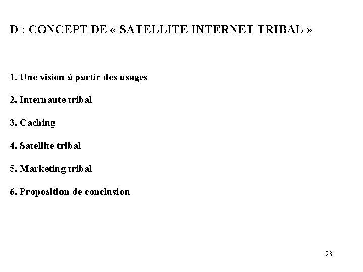 D : CONCEPT DE « SATELLITE INTERNET TRIBAL » 1. Une vision à partir