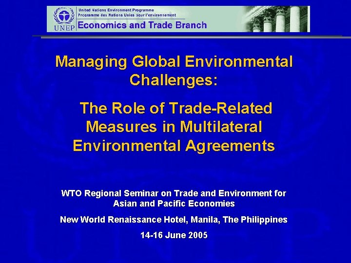 Managing Global Environmental Challenges: The Role of Trade-Related Measures in Multilateral Environmental Agreements WTO