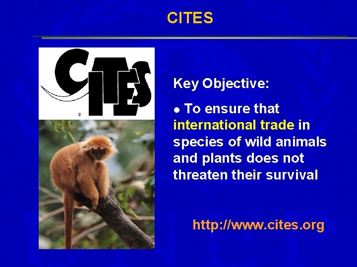 CITES Key Objective: To ensure that international trade in species of wild animals and