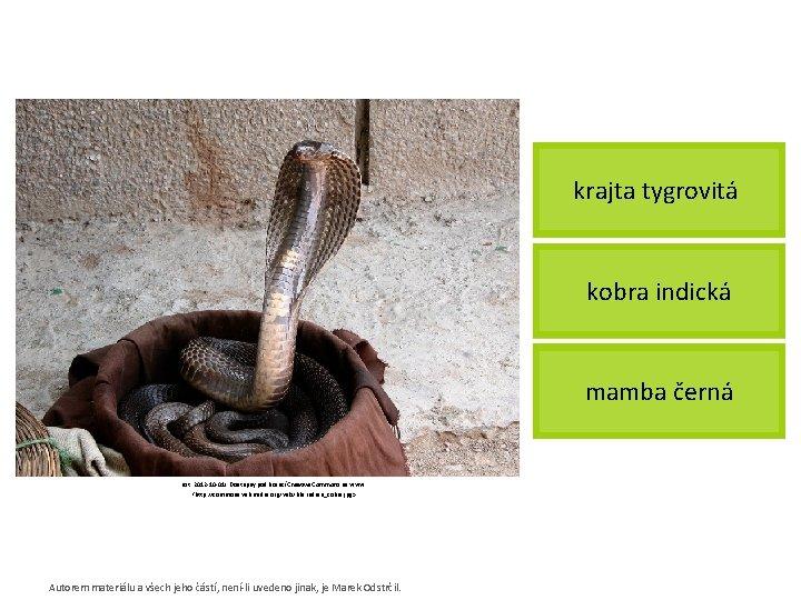 krajta tygrovitá kobra indická mamba černá [cit. 2012 -10 -01]. Dostupný pod licencí Creative