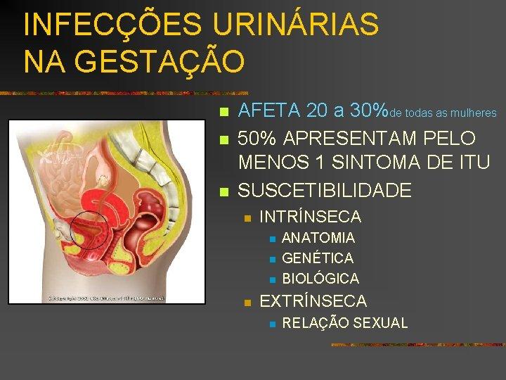 INFECÇÕES URINÁRIAS NA GESTAÇÃO n n n AFETA 20 a 30%de todas as mulheres