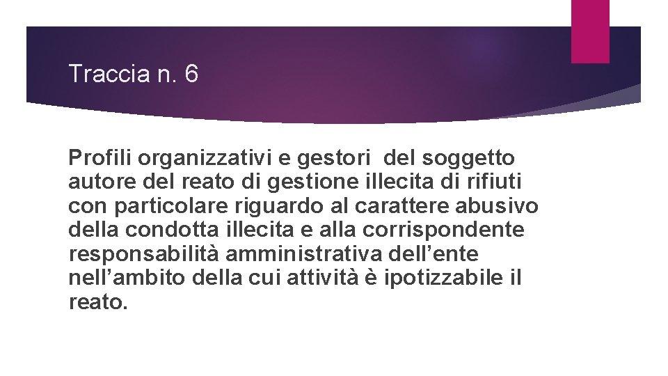 Traccia n. 6 Profili organizzativi e gestori del soggetto autore del reato di gestione