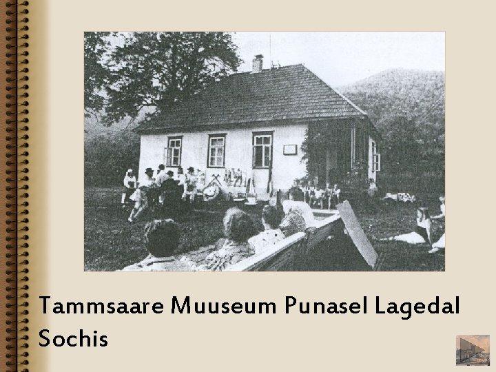 Tammsaare Muuseum Punasel Lagedal Sochis