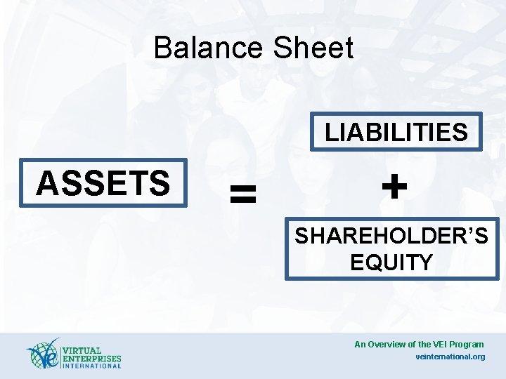 Balance Sheet LIABILITIES ASSETS = + SHAREHOLDER'S EQUITY An Overview of the VEI Program