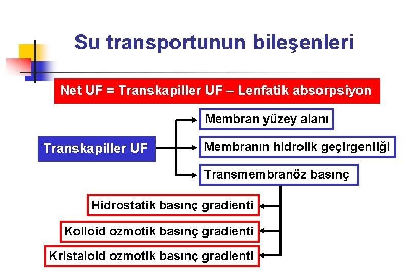 Su transportunun bileşenleri Net UF = Transkapiller UF – Lenfatik absorpsiyon Membran yüzey alanı