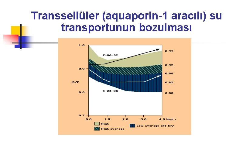 Transsellüler (aquaporin-1 aracılı) su transportunun bozulması
