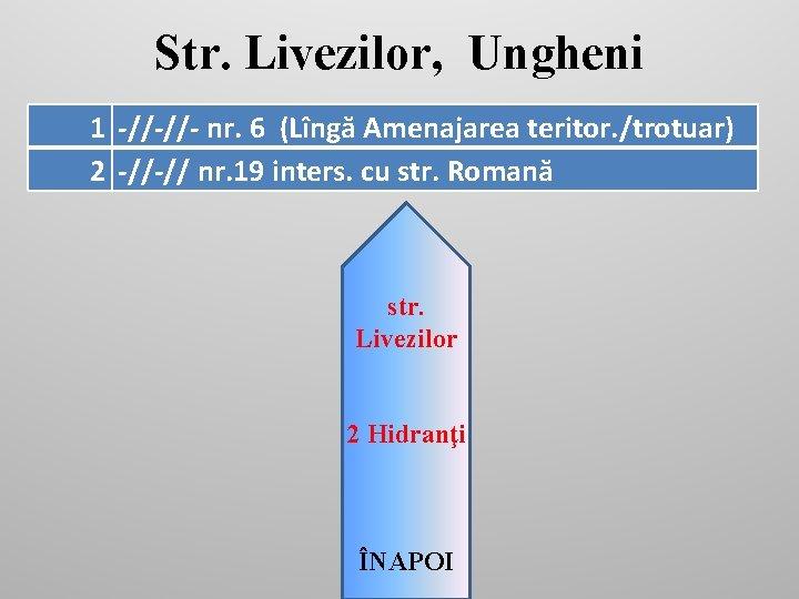 Str. Livezilor, Ungheni 1 -//-//- nr. 6 (Lîngă Amenajarea teritor. /trotuar) 2 -//-// nr.