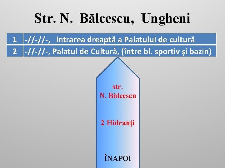 Str. N. Bălcescu, Ungheni 1 -//-//-, intrarea dreaptă a Palatului de cultură 2 -//-//-,