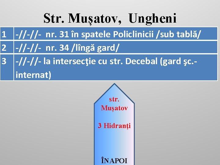 Str. Mușatov, Ungheni 1 -//-//- nr. 31 în spatele Policlinicii /sub tablă/ 2 -//-//-