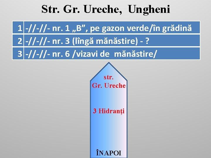 """Str. Gr. Ureche, Ungheni 1 -//-//- nr. 1 """"B"""", pe gazon verde/în grădină 2"""