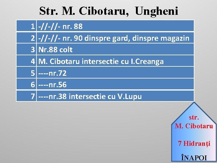 Str. M. Cibotaru, Ungheni 1 2 3 4 5 6 7 -//-//- nr. 88