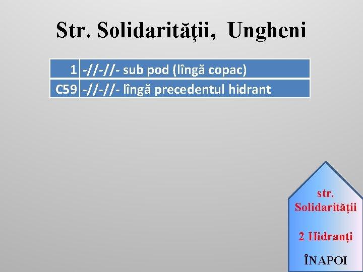 Str. Solidarității, Ungheni 1 -//-//- sub pod (lîngă copac) C 59 -//-//- lîngă precedentul