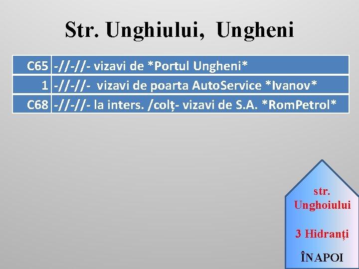 Str. Unghiului, Ungheni C 65 -//-//- vizavi de *Portul Ungheni* 1 -//-//- vizavi de