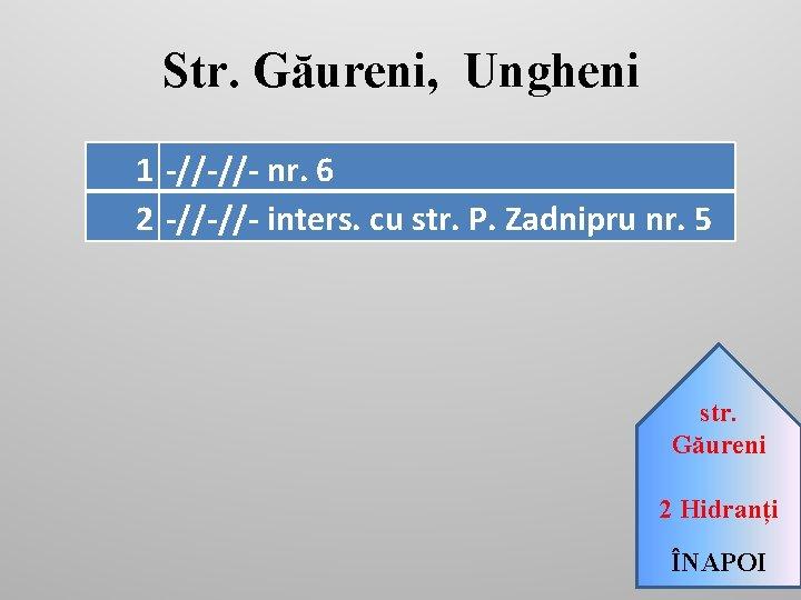 Str. Găureni, Ungheni 1 -//-//- nr. 6 2 -//-//- inters. cu str. P. Zadnipru