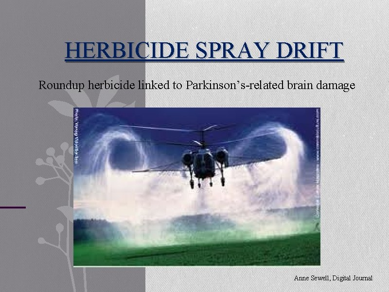 HERBICIDE SPRAY DRIFT Roundup herbicide linked to Parkinson's-related brain damage Anne Sewell, Digital Journal