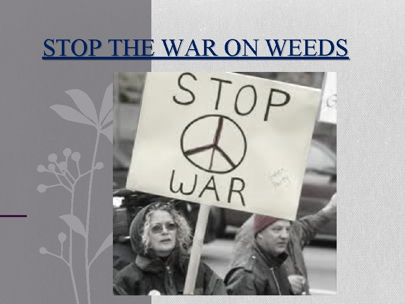 STOP THE WAR ON WEEDS